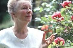 A Velhice e Florais de Bach